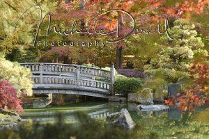Japanese Gardens at Manito